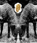 YEAR OF THE HORSE 2014: ART : Equestrian inspired stream of consciousness