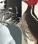 STYLE COLLAGE : FEATHER FASHIONS