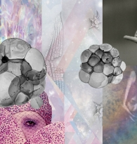 COLLAGE : STYLE IRIDESCENCE by Anna Yanofsky