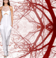 CHAKRA STYLE : CUTOUT CLOTHING & ENERGY   CENTERS