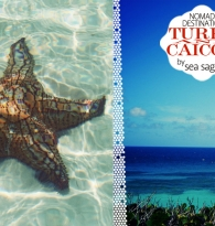 TRAVEL: TURKS AND CAICOS ISLANDS DESTINATION GUIDE with Amy Brown of Sea Sage