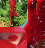 COLLAGE : TRAVEL TO RED DESTINATIONS