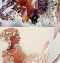 ART COLLAGE: Wangechi Mutu : A Fantastic Journey  by Alexandra Thom
