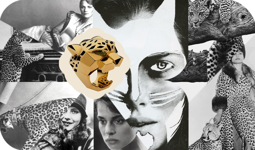 CAT POWER :  Felines  in  Film