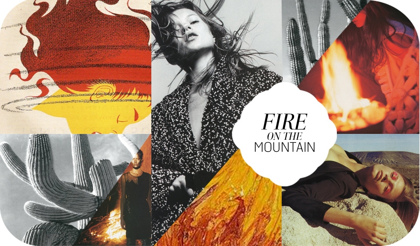 SANTA ANA WINDS : FIRE ON THE MOUNTAIN